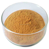 Bacopa Monnieri/ Brahmi Extract Powder