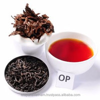 High Quality Compeitive Price in Market black tea OP