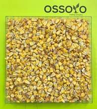 Yellow corn for animals feed/Dried yellow corn for animal feed grade