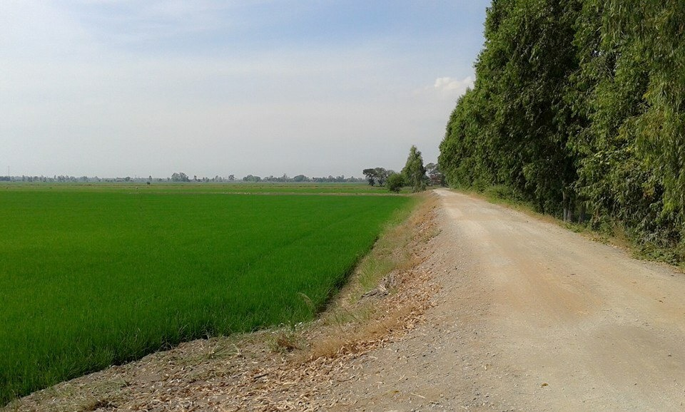 Land Sales in Thailand for solar farm/agriculture