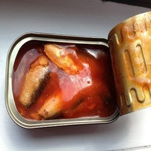 Best sell canned mackerel fish in tomato sauce