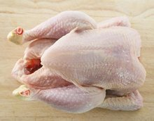 Best quality Whole Frozen Chicken /Halal Whole Frozen Chicken For Export
