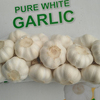/product-detail/fresh-garlic-fresh-white-garlic-50037205312.html