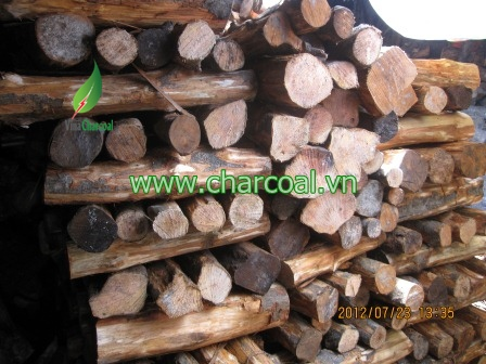 Great Quality Citrus Charcoal from Viet nam