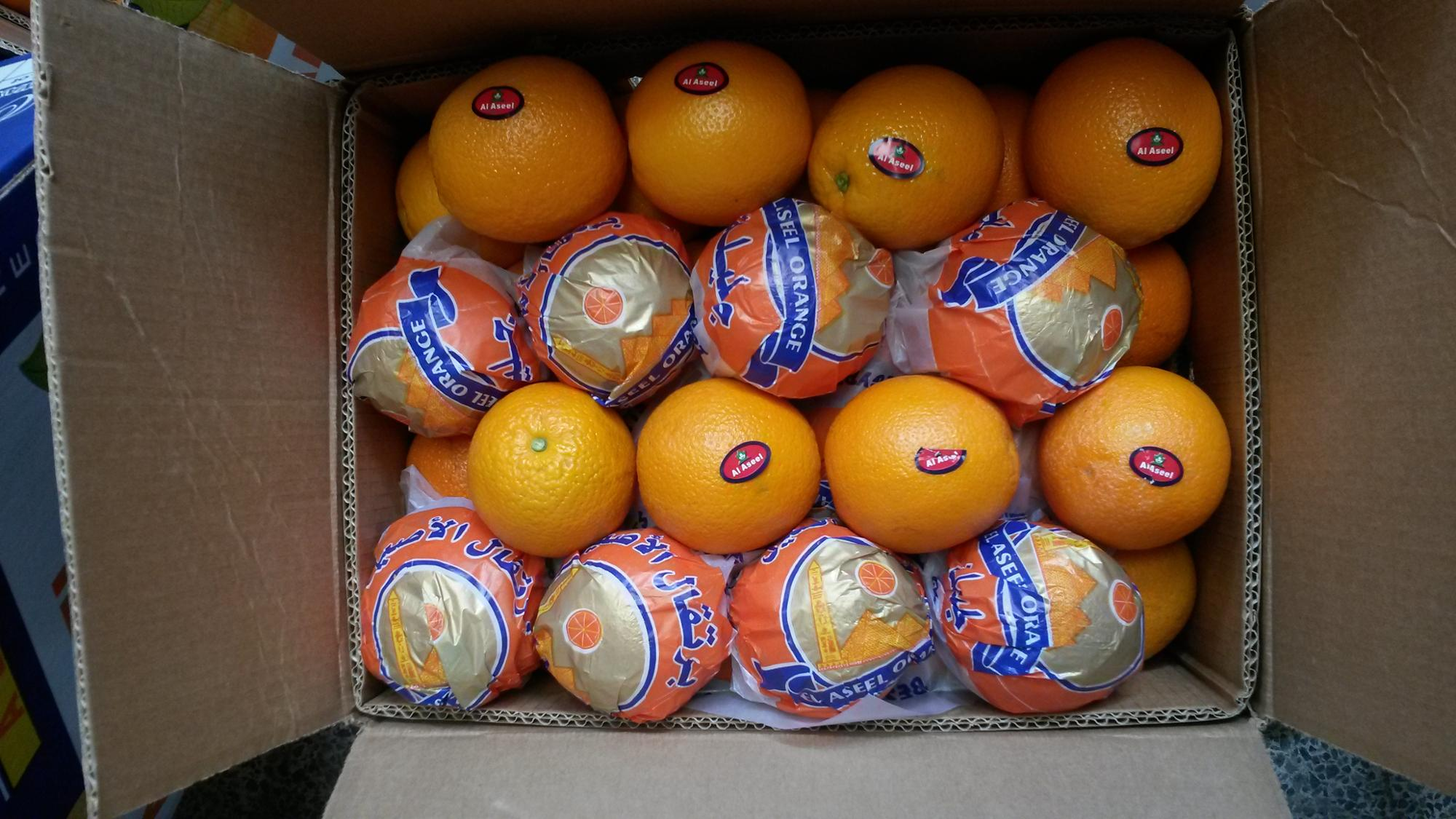 SUGAR TASTE FOR ORANGE FROM EGYPT