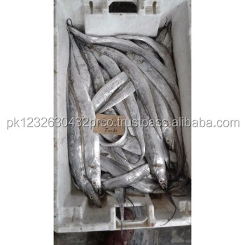 Frozen Ribbon Fish A and B Grade Available from Karachi Pakistan