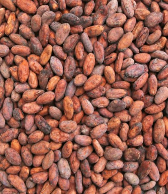 Cacao Beans from Peru - Super Foods