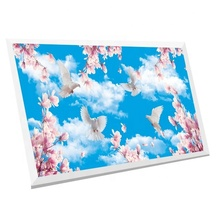 Faux led skylight decorative led light panels 60x60cm luminous sky ceiling