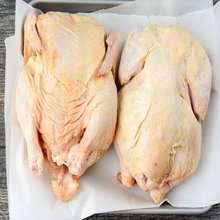 Brazil Halal Frozen Whole Chicken and Chicken parts