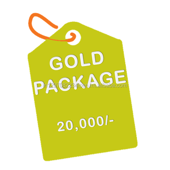Gold Package:- Business Website Design with free domain & hosting