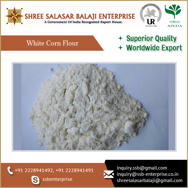 Organic White Corn Flour Available from Indian Supplier