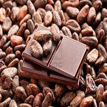 Top Grade Cocoa Beans for Salee