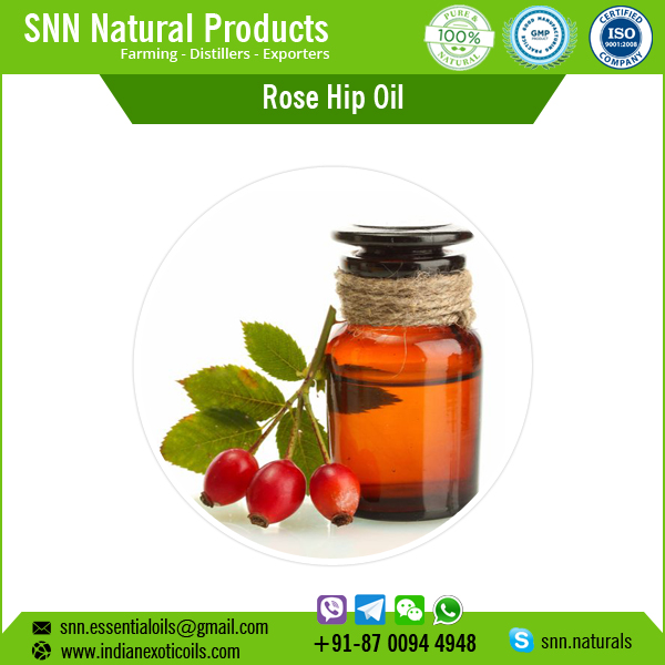 All Over No. 1 Rosehip Seed Oil / Pure Rosehip Oil