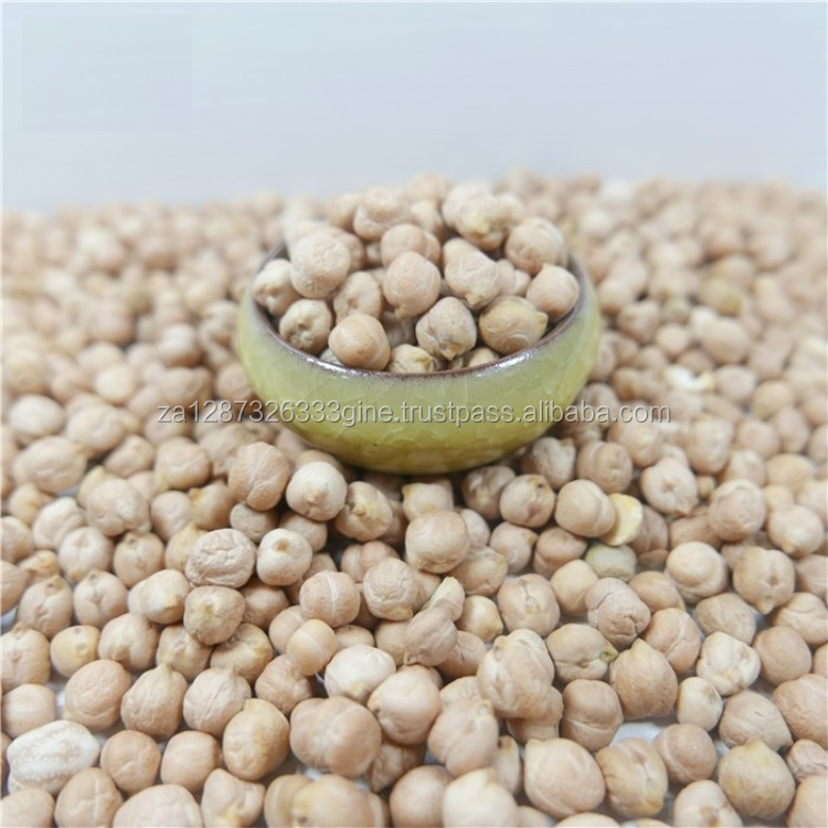 Top Quality Factory direct wholesale cheap white chickpeas