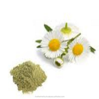 Natural Chamomile Flowers Extract From India