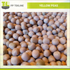 Widely Used Bulk Yellow Peas from Ukraine