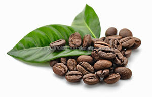 Hot sale 100% PURE arabica green/raw coffee beans
