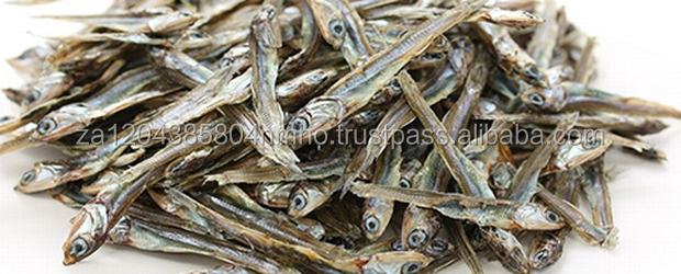 Dried, Frozen, Salted Anchovy Fish, shrimps, seafood