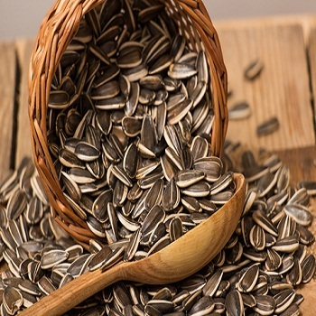 sunflower seeds 2015 new crop
