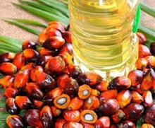 100% NATURAL CRUDE PALM OIL/REFINED PALM OIL CP6, CP8, CP10