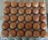 /product-detail/fresh-brown-chicken-eggs-ukraine-chicken-eggs-fresh-brown-eggs-50037403851.html