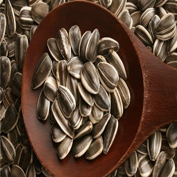High Quality Hulled Sunflower seeds 601 from Inner Mongolia(230-240pcs/50g)