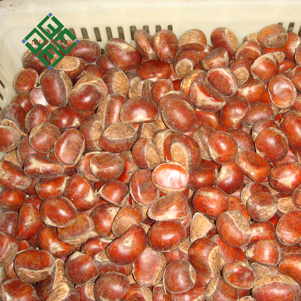 Good quality Fresh Chestnuts / Raw Chestnuts / Dried Chestnut