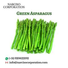 Green Asparagus Fresh/Canned/Frozen