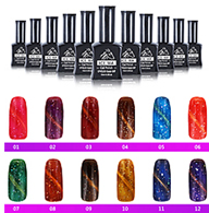 Perfect ICE MA Brand OEM Magnetic 3D Chameleon Cat Eyes Gel Nail Polish with Private Label
