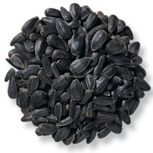 Wholesale Black Oil Roasted and Salted Sunflower Seeds 25kg per bag