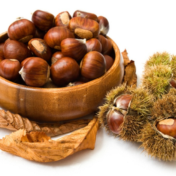 Competitive price chestnuts,health food,buy chestnuts