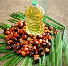 100% Refined Cooking Palm Oil For Sale