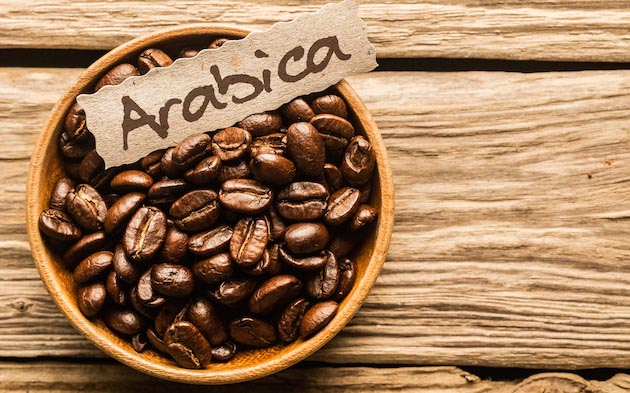 Coffee beans arabica and instant arabica coffee with competitive price Grade A from Thailand,