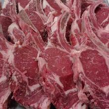 Grade A 100% Halal Fresh/Frozen Sheep /Goat /Lamb Meat