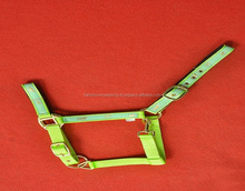 FLORESCENT COLOR NYLON PADDED HALTER