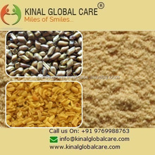 Best Price Food Grade Cassia Gum Powder From India