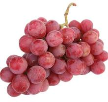quality Fresh Organic Grapes