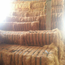 FACTORY PRICE - COCONUT FIBER - 084 975584679