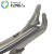 Dental tooth forceps dental instruments Adult tooth extraction pliers dental forceps