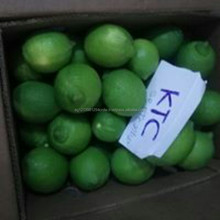 Green lemon/ Fresh lime/ fresh lemon seedless for sale