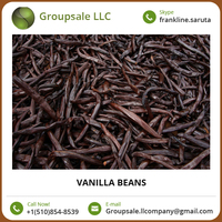 Low Price Affordable Vanilla Bean For