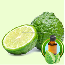100% Pure Bergamot Essential Oil From Herbs Village