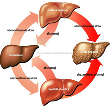 HOT 2019!!! DIABETIC LIVER MEDICINE / ALCOHOLIC FATTY LIVER TREATMENT GINGOLIN CAP BY KDN BIOTECH PVT LTD., PANIPAT, INDIA