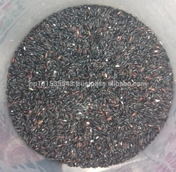 Black Rice of Nepal/Organic black Rice of Nepal/Healthy black Rice
