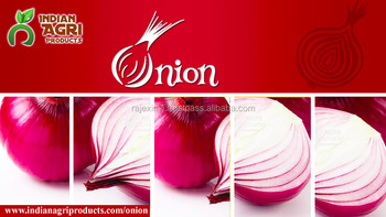 Big Red Onion From India