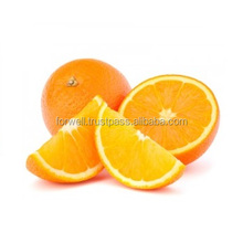 Fast delivery shipment wherever you are / Orange / Egypt