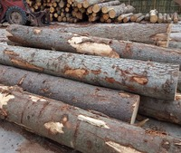Best quality Teak wood logs and tropical timber logs