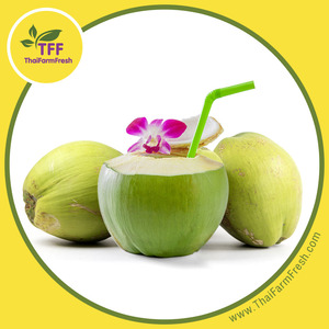 HIGHT QUALITY AROMATIC GREEN YOUNG COCONUT / NAM HOM Variety / Ratchaburi, Thailand