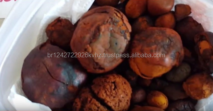 Grade A Ox gallstones available and can be shipped worldwide