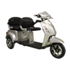 EEC tricycle 1500 W personel transport vehicle delivery only 7 days